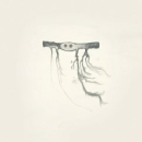 Jose Gonzalez - In Our Nature - CD